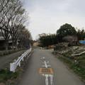 Photos: 13.03.23.赤山陣屋跡(川口市)二郭北西・外堀