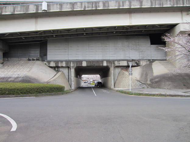 赤山陣屋跡(川口市)外堀