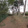 赤山陣屋跡(川口市)南西堀