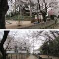13.03.23.山王三社旧境内(川口市)