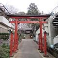 Photos: 赤山日枝神社(川口市)
