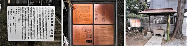 赤山日枝神社(川口市)