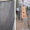 Photos: 赤山日枝神社(川口市)八幡宮石祠