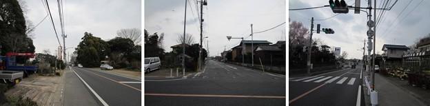 赤山街道(左右)