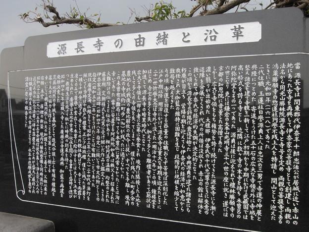 源長寺(川口市)