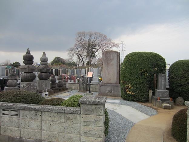 Photos: 源長寺(川口市)伊奈家墓所