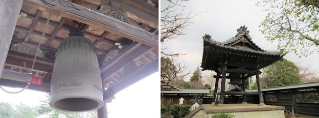 金剛寺(川口市)梵鐘