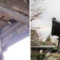 Photos: 金剛寺(川口市)梵鐘