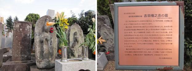 金剛寺(川口市)安行苗木開発の祖 吉田権之丞墓
