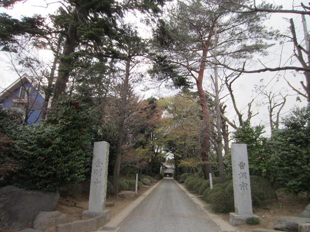 金剛寺(川口市)惣門