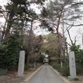 Photos: 金剛寺(川口市)惣門