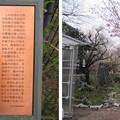13.03.23.興禅院(川口市)