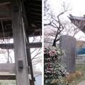 興禅院(川口市)鐘楼・梵鐘