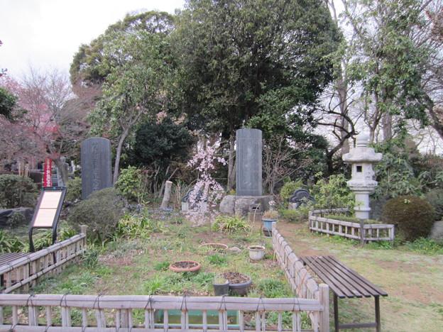 興禅院(川口市)境内