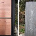 興禅院(川口市)観音像板碑