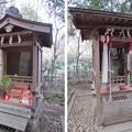 Photos: 興禅院(川口市)弁財天