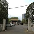 Photos: 13.04.10.錫杖寺(川口市)