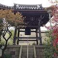 Photos: 13.04.10.錫杖寺(川口市)鐘楼