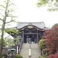 Photos: 錫杖寺(川口市)本堂
