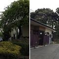 Photos: 13.04.16.木曽呂の富士塚・高田水稲荷神社(川口市)