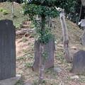 木曽呂の富士塚(川口市)板碑