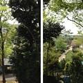 Photos: 木曽呂の富士塚(川口市)下は見沼代用水