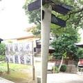 鳩ヶ谷氷川神社(川口市)狛犬・境内