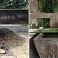 鳩ヶ谷氷川神社(川口市)御神水・手水舎