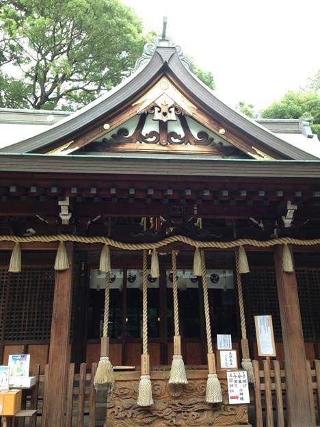 鳩ヶ谷氷川神社(川口市)拝殿