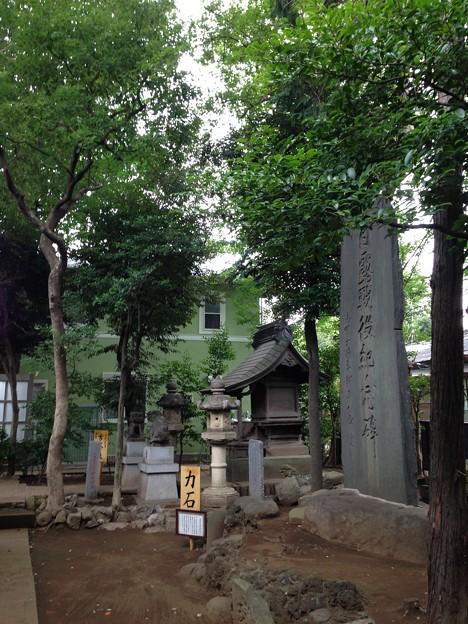 鳩ヶ谷氷川神社(川口市)境内