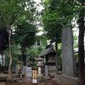 Photos: 鳩ヶ谷氷川神社(川口市)境内