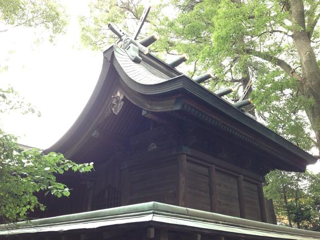 鳩ヶ谷氷川神社(川口市)本殿