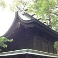 Photos: 鳩ヶ谷氷川神社(川口市)本殿