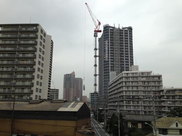 Photos: 善光寺(川口市)より北