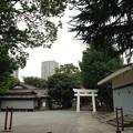 13.07.17.飯塚氷川神社(川口市)境内・公園