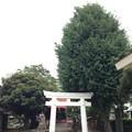 飯塚氷川神社(川口市)