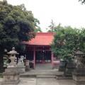 Photos: 飯塚氷川神社(川口市)拝殿