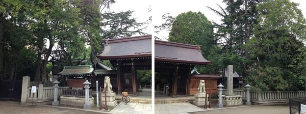 Photos: 川口神社(埼玉県)神門