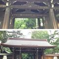 川口神社(埼玉県)神門