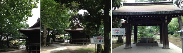Photos: 13.07.17.川口神社(埼玉県)神楽殿