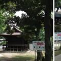 13.07.17.川口神社(埼玉県)神楽殿