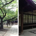 川口神社(埼玉県)社務所