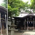 川口神社(埼玉県)拝殿