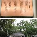 Photos: 川口神社(埼玉県)護国神社