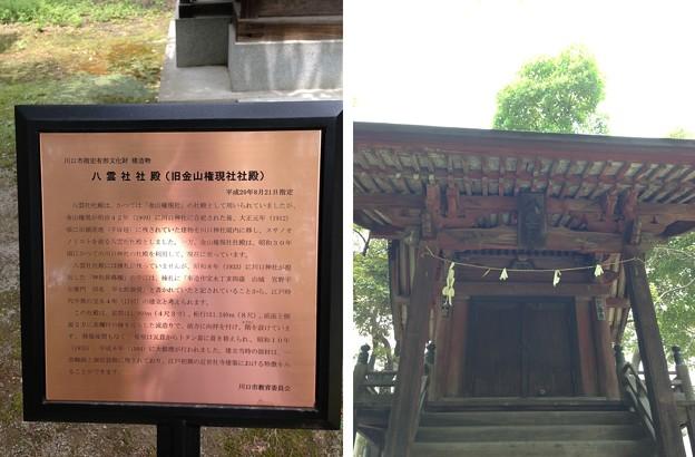 Photos: 川口神社(埼玉県)八雲社