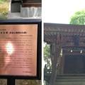 川口神社(埼玉県)八雲社