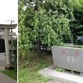 川口神社(埼玉県)北側鳥居