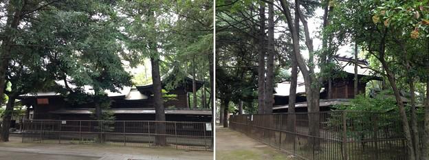 川口神社(埼玉県)社殿