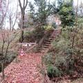 菅谷館(嵐山町)外堀