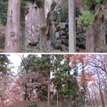 Photos: 菅谷館(嵐山町)畠山重忠像
